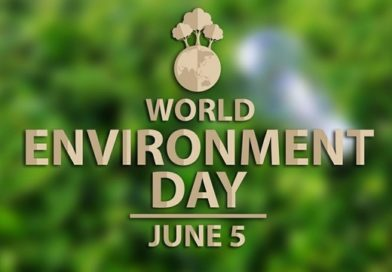 5th June- World Environment Day – Classroom resources & Transversal elements for the English class.